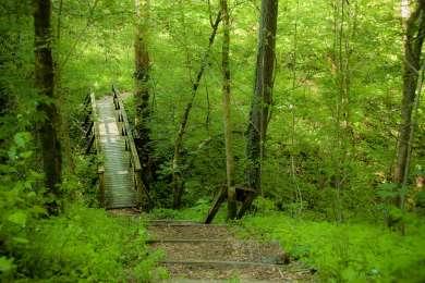 Fort Boonesborough Campground