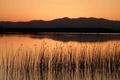 Roper Lake Campground