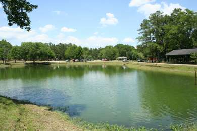Blue Springs Campground