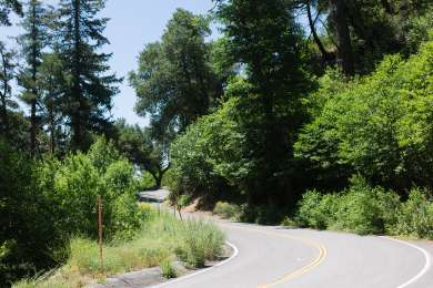 The road to the campground and past it to the general store at the top of the mountain is so pretty.