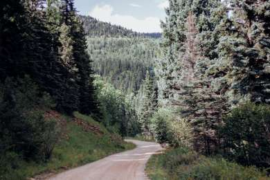 Forest Road 76. Mile 5.