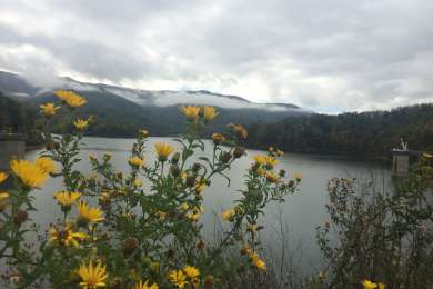 The view from Wautuga Dam, looking towards Carden Bluff Campground.