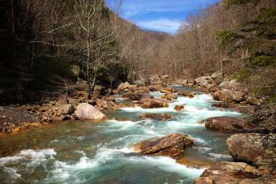 Be sure to check out North Chickamuaga Creek Gorge!