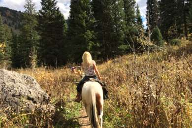 Teton Canyon Campground
