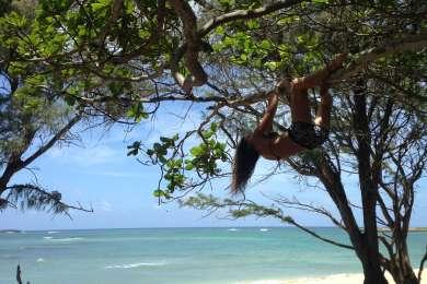 Malaekahana is a good time. Climb the trees, take some sun, or wade out to Goat Island.
