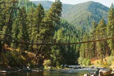 The swinging bridge over Rock Creek