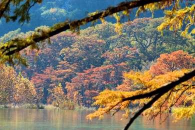 Pecan Grove Campground