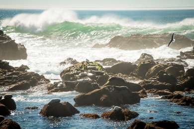 Gerstle Cove Campground