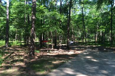 Spacious camp sites. Took the tent down, but theres a nice spot for it directly in front of the hammock