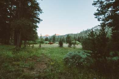 Pacific Valley Campground