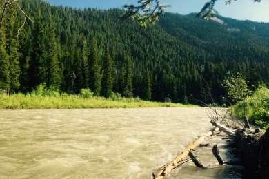 Campsite 2 View