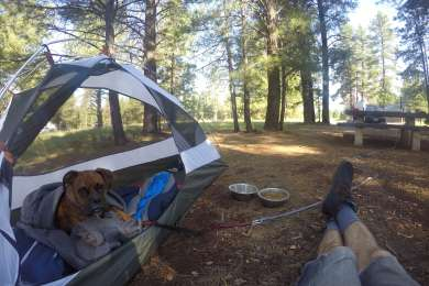 Canyon Vista Campground