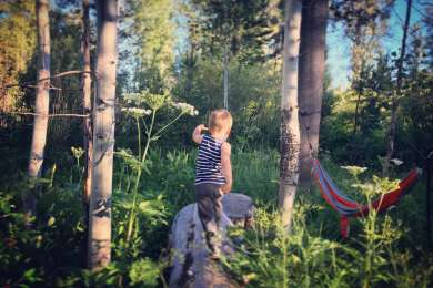 Site 21 is walkin but worth the (very) small trek with your gear. It's adjacent to a beautiful little meadow that our kiddo enjoyed playing in, and has a perfect hammock spot.
