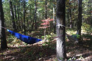 Primitive camping spot -- plenty of trees to hang your hammock.