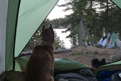 Grouse Ridge Campground