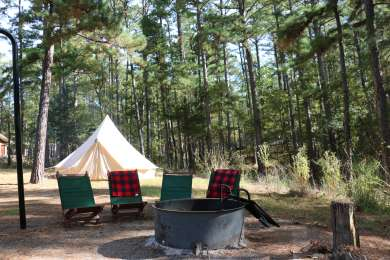 Spacious campsites surrounded by cedars.