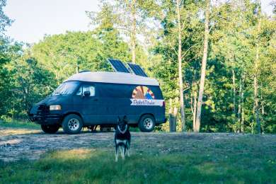 This is one of the more open camping spots in the national forest.