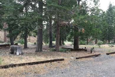 Lupine Campground