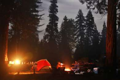 Night moves at the campground