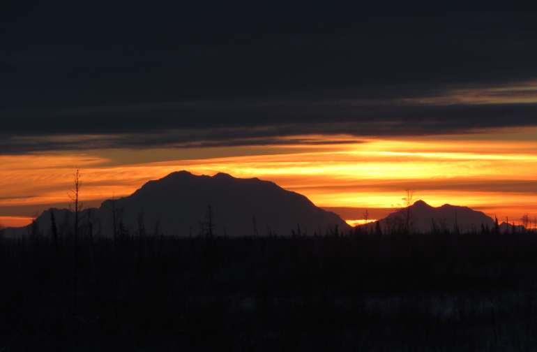 Denali Sunset