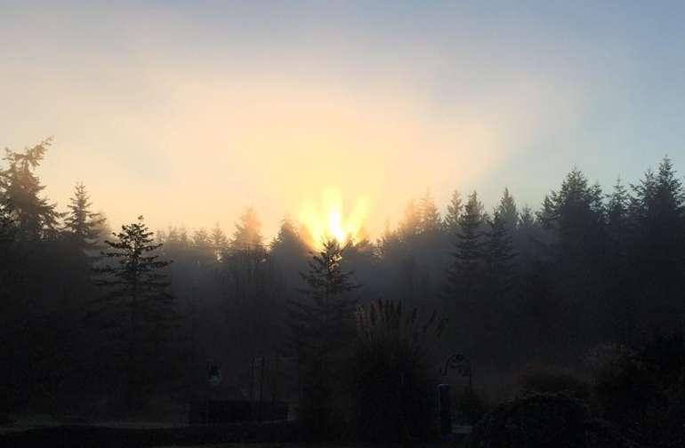 East Meadow Sunrise