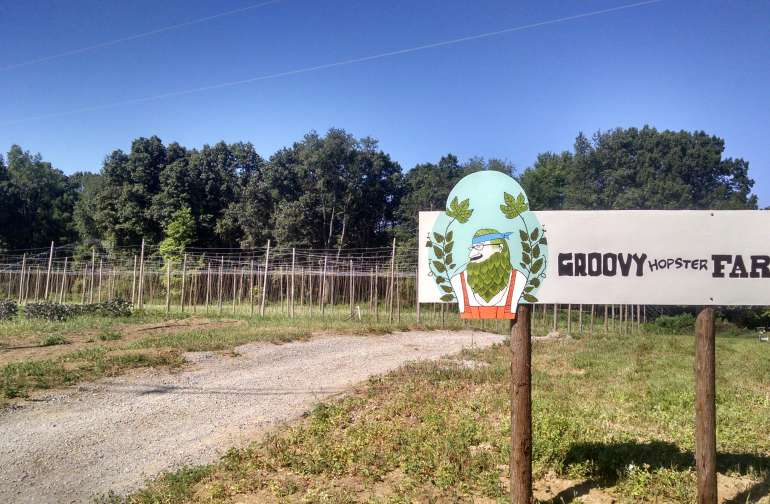 Groovy Hopster Farm Camp