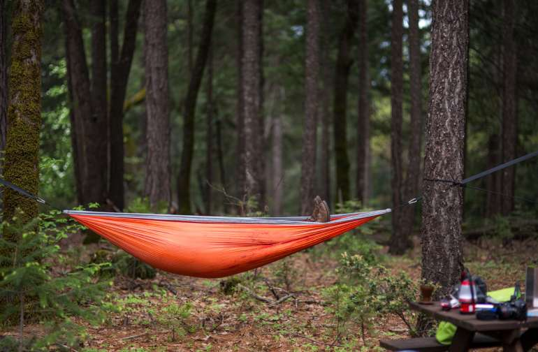 If you own a hammock, this is the place to bring it