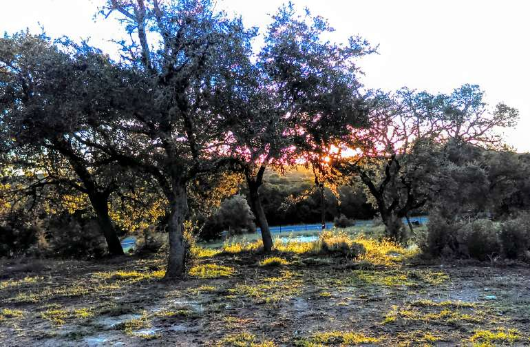 Post sunrise campsite 2