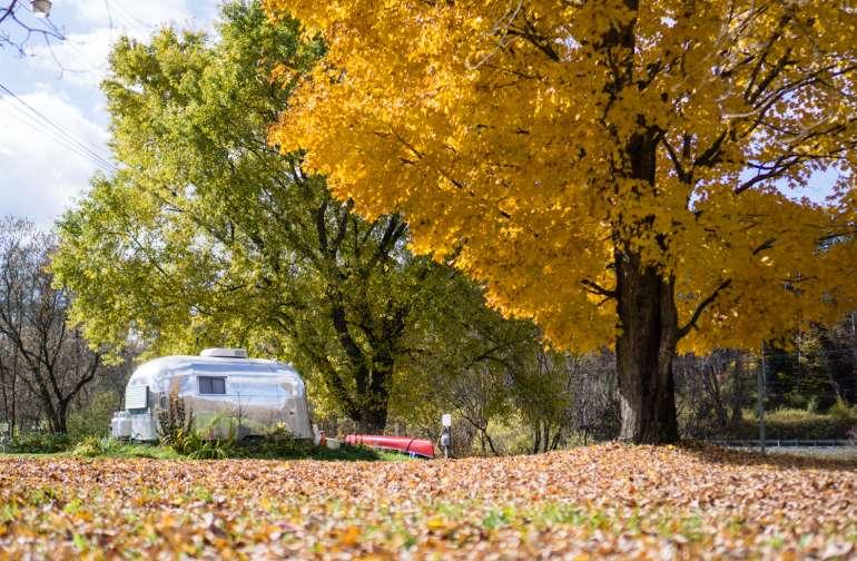 Fall in camp!