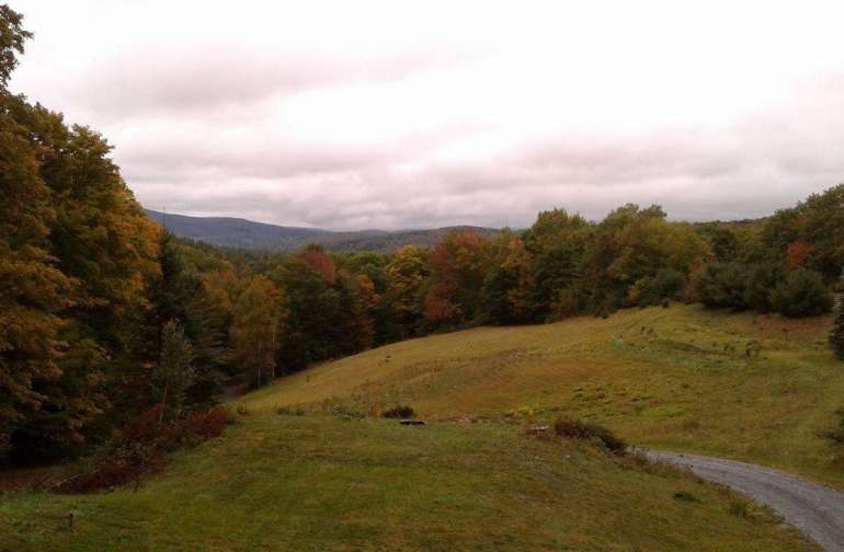 beautiful fall landscape view from our home!