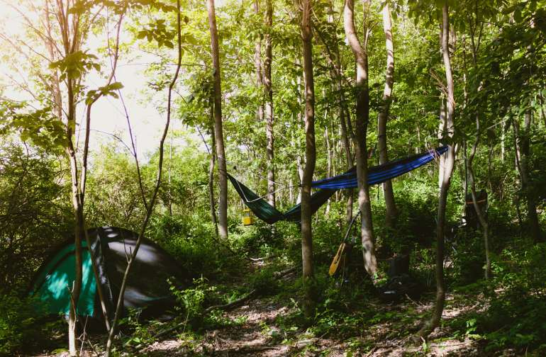 This nice forest spot is a great area to set up for the night!