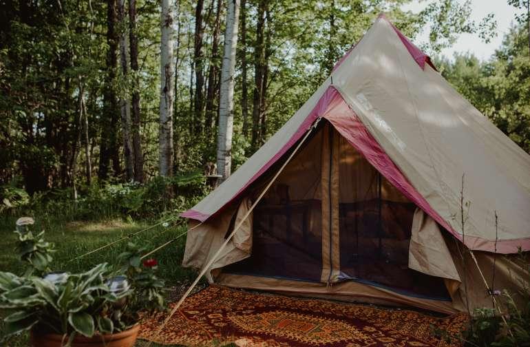 forest lodging instagram