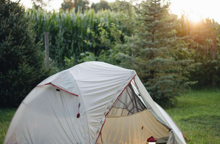 tent trees lodging