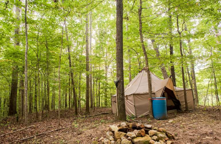 You're not far from downtown Nashville but you wouldn't know it up here surrounded by a thick forest.