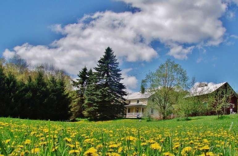 Perfect Valley Farm