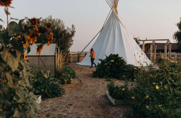 people lodging camper
