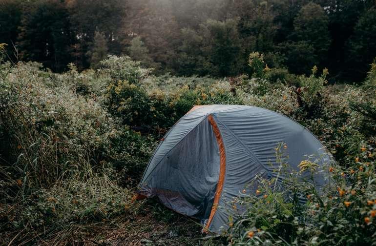 Camp site!