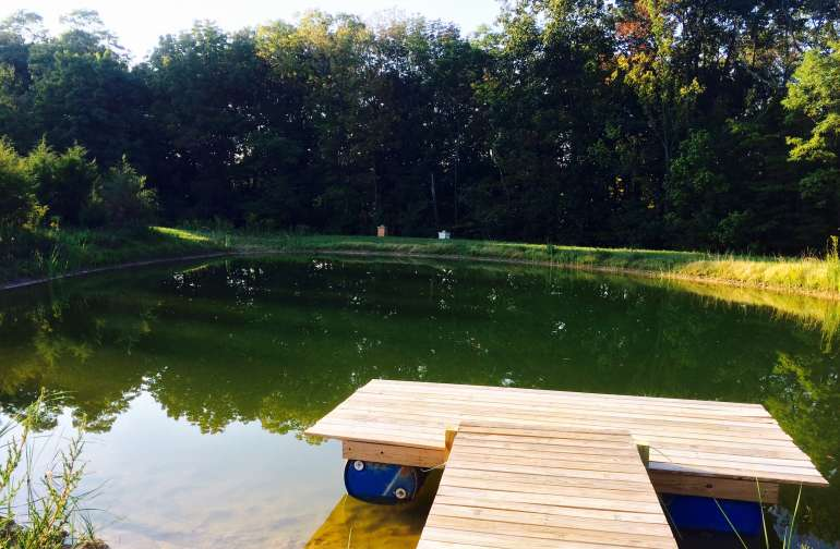 Dive in to cool off and sunbathe on the dock.