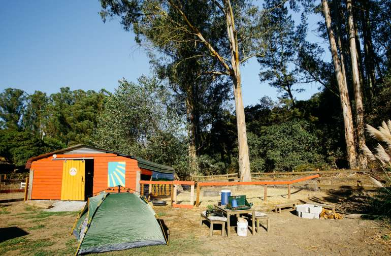 Campsite 1 by goats