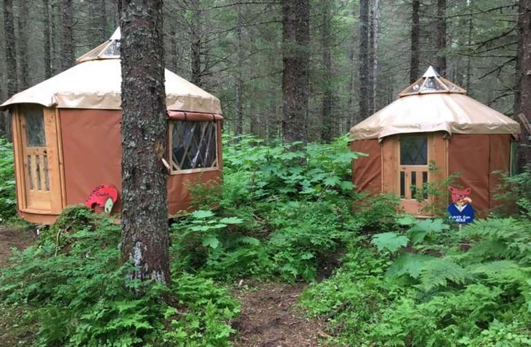 Cozy Yurt nestled in the woods