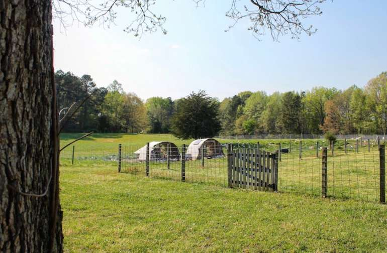 Pasture and Mobile Chicken Coops
