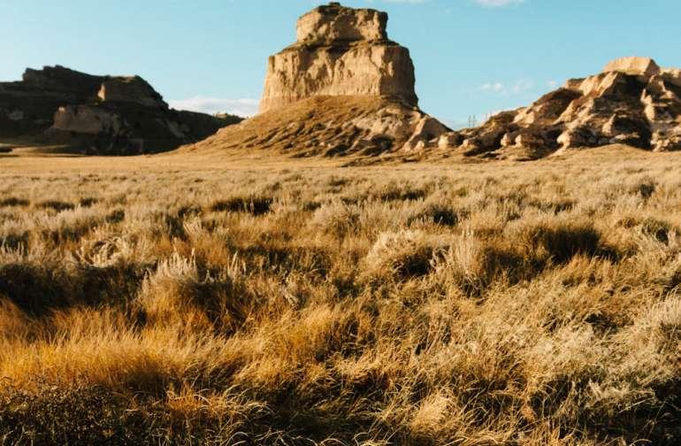 Peaceful Prairie at Rose Hill