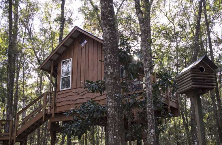Awaken your inner child with this high-up-in-trees home!