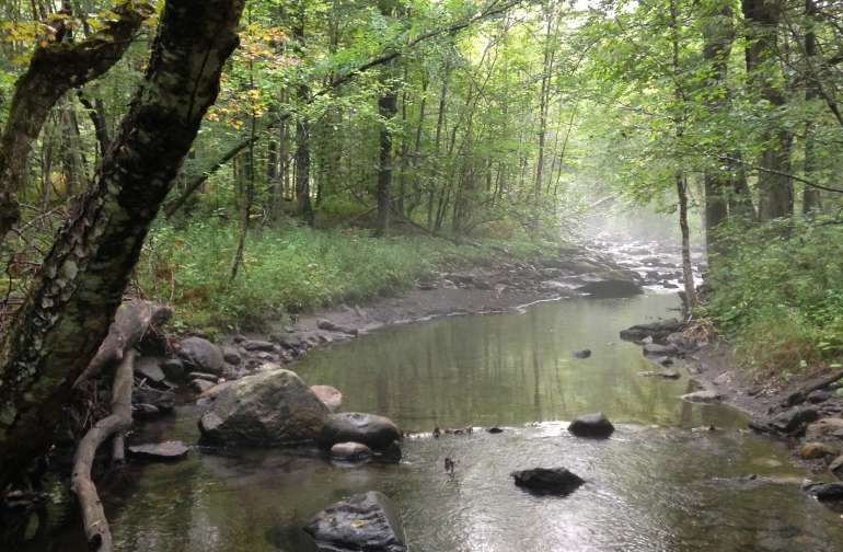 Our year round creek