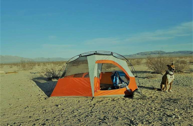 BYO Tent-Off Grid Under Stars!
