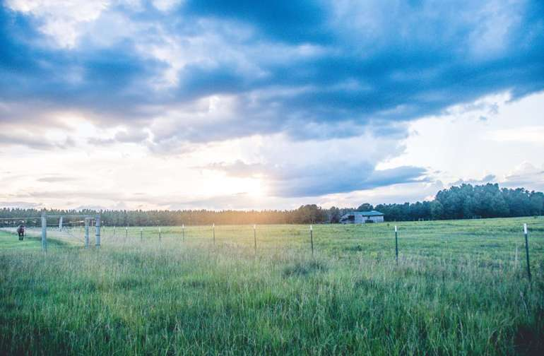 A view looking over our pasture and the neighboring property.