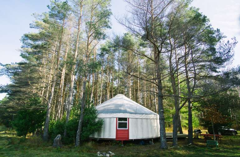 The yurt is nestled in the trees.