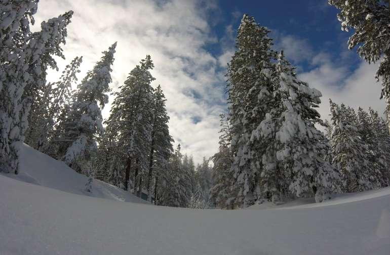 Lake Davis 420