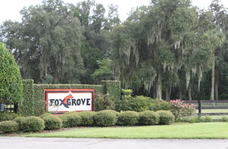 Fox GroveFarm