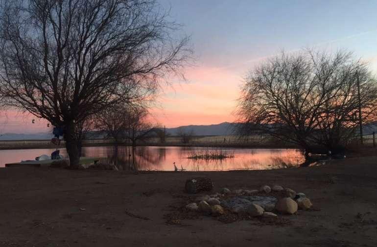 Camp Tule Elk Campsites